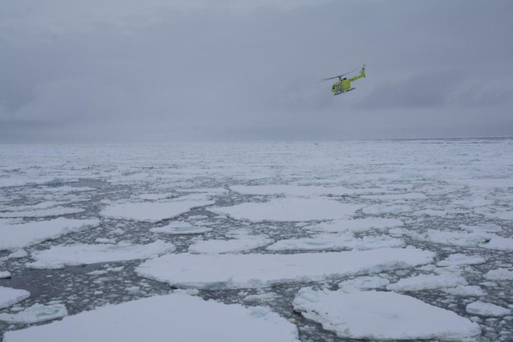 Sea ice at Cape Adare