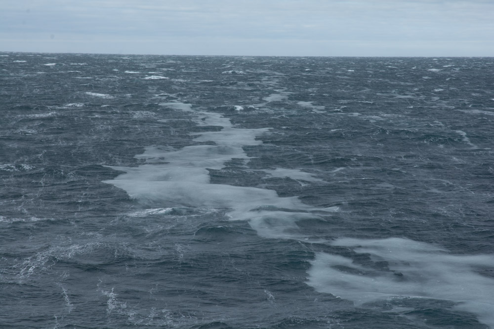 Grease ice forming on rough seas, in the Ross Sea