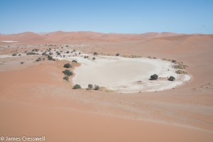 The clay pan at Sossusvlei