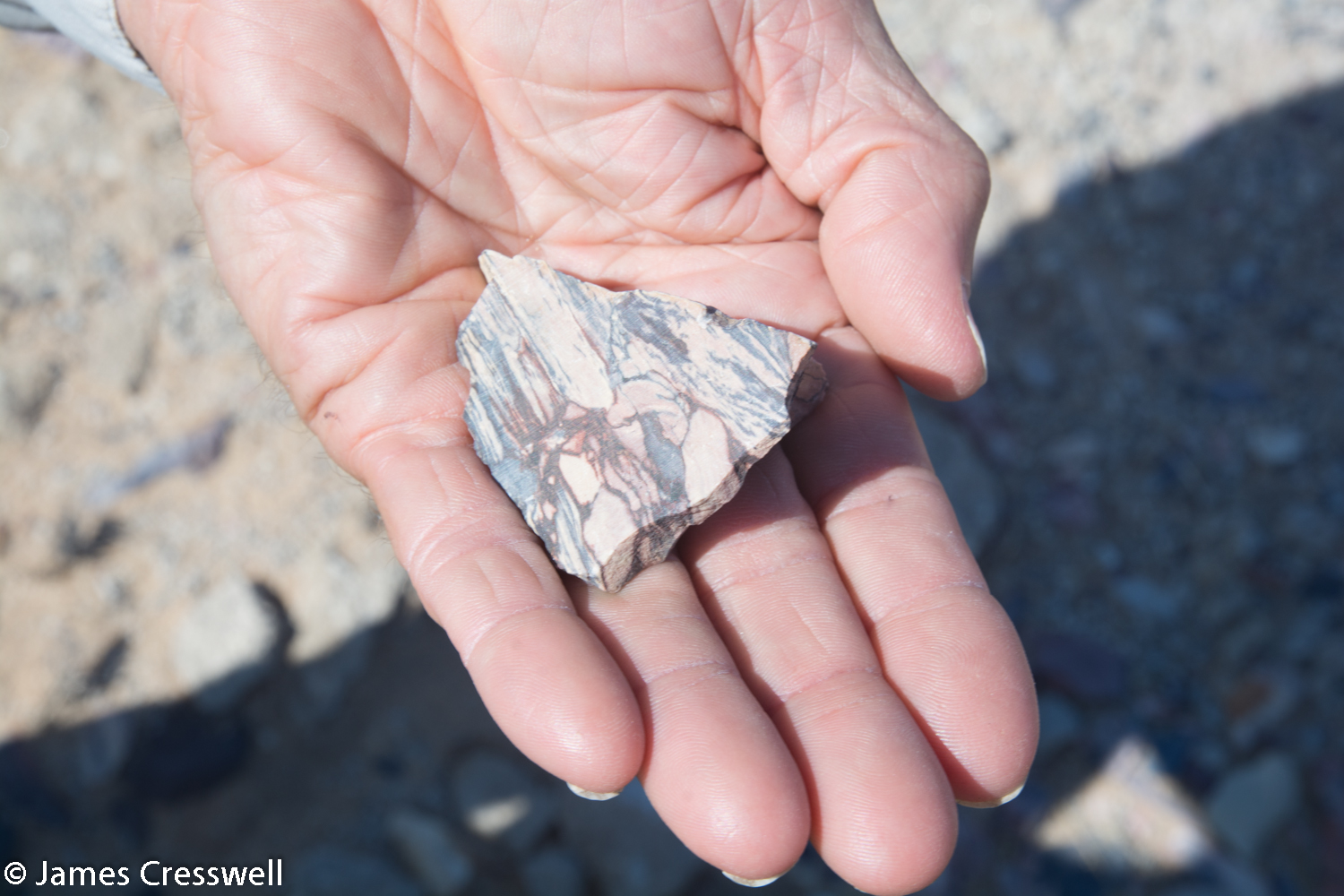 Pyrophyllite it is a metamorphic rock (a hornfel) that was once a lacustrine Karoo sediment. It was brecciated (broken up) by the Brandberg granite busting through and was contact metamorphosed. It forms a beautiful rock that was once mined as ornamental stone. Namibia.