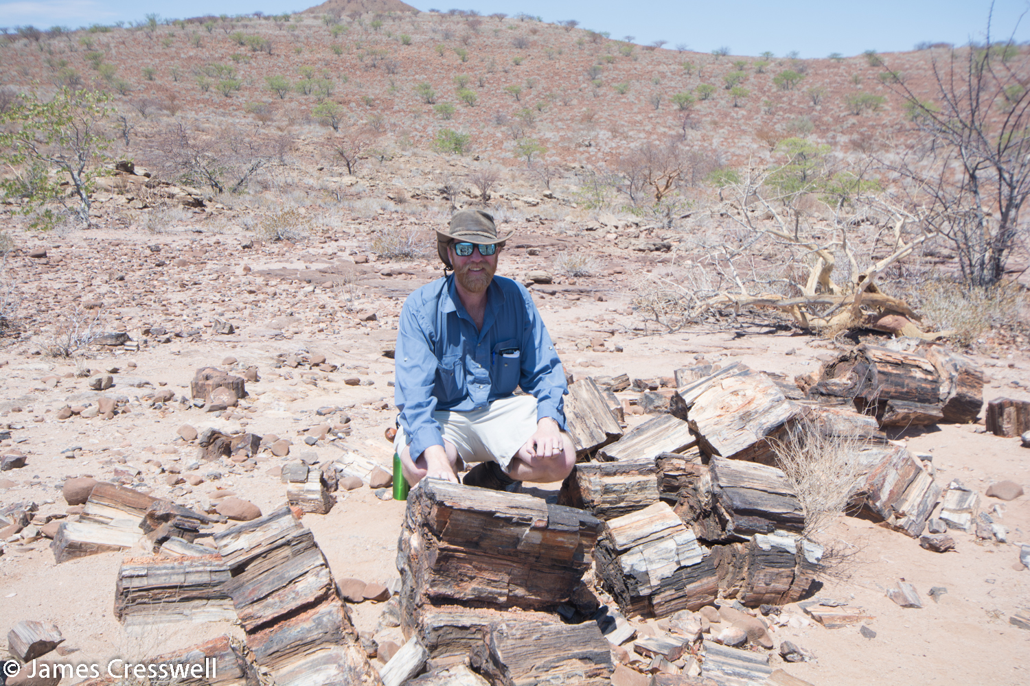James Cresswell with 270ma Permian petrified trees which grew in cold humid conditions and were up to 30m high. The trees are contained within fluvial sediments of the Karoo supergroup.
