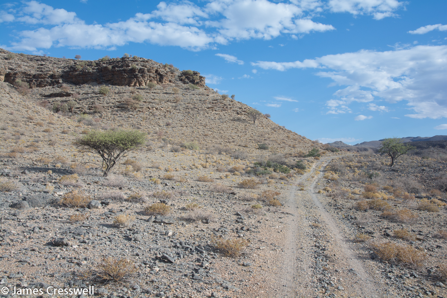 The road near Zebra River Lodge, Namibia where the Namacalathas fossils occur