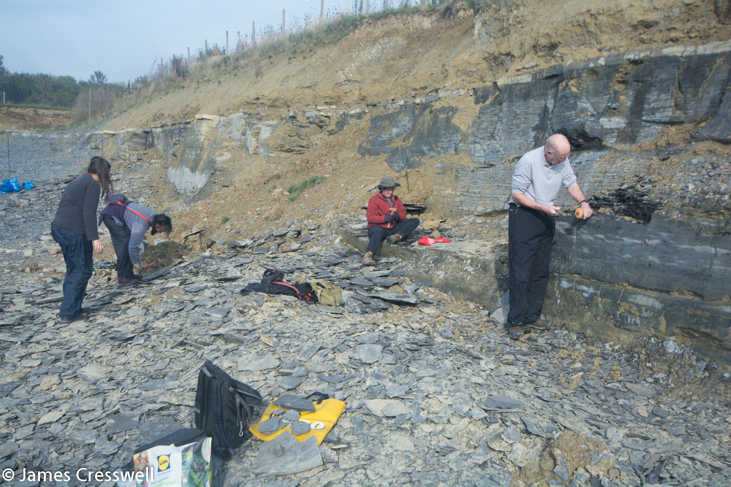 People finding fossils in a quarry