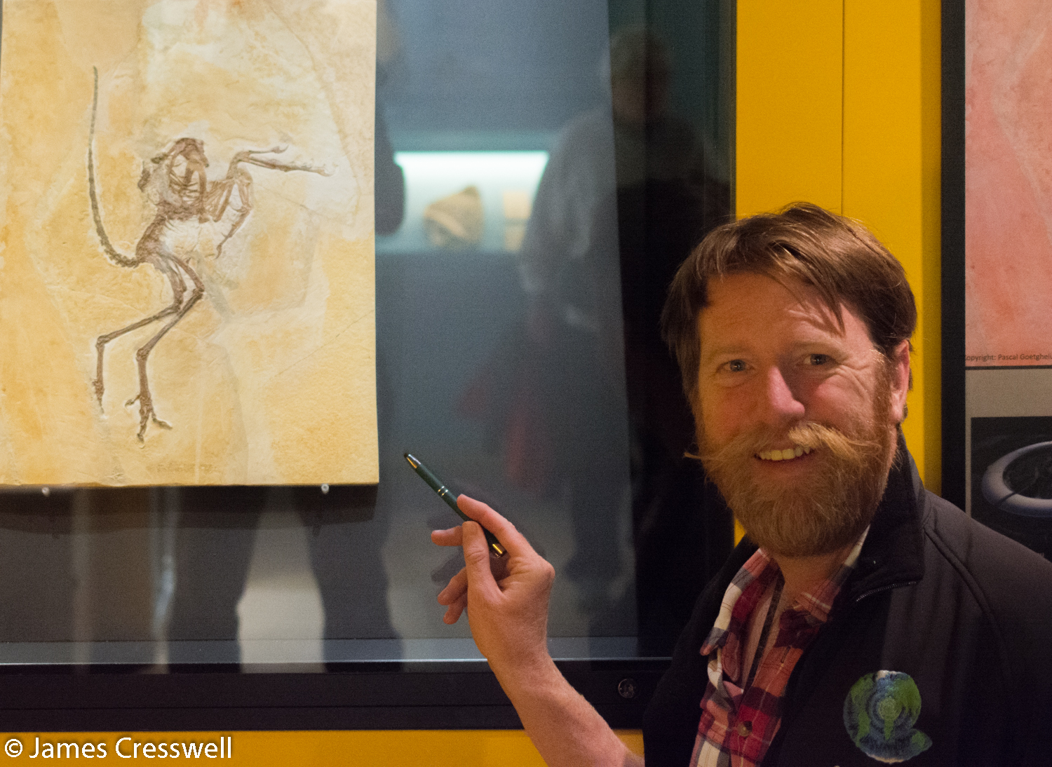 Man pointing at Archaeopteryx fossil