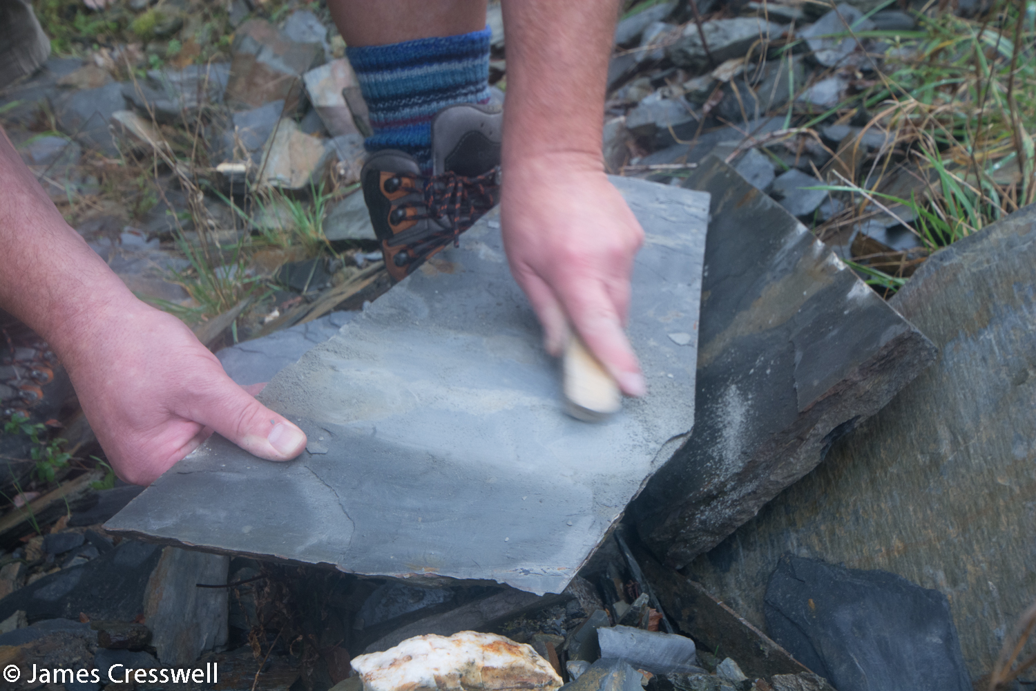 Brushing a suspected fossil in slate