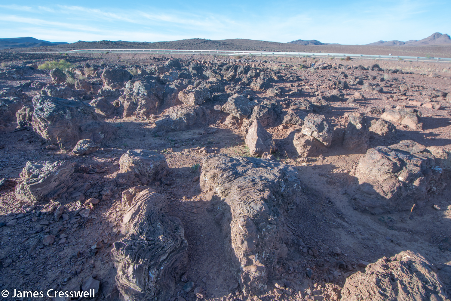 Uneven land surface with stromatolites standing proud