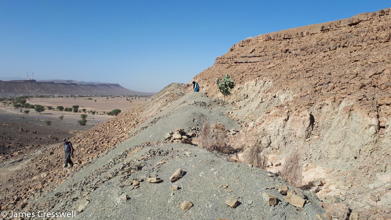 Fossil diggings