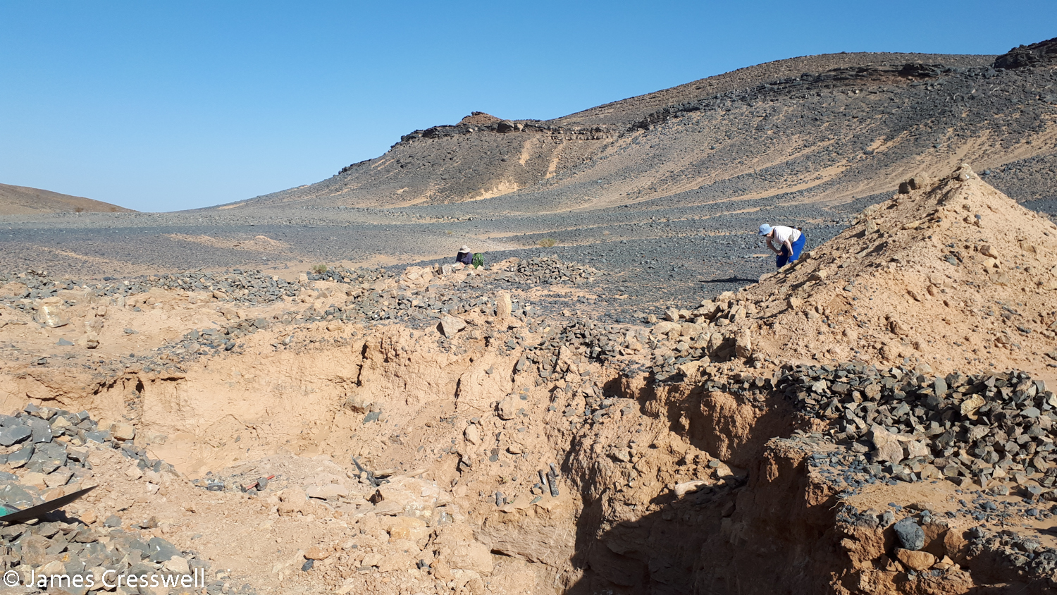 People looking for fossils in a desert landscape