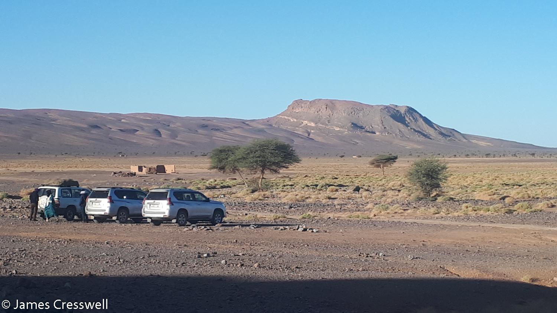 A mud mound
