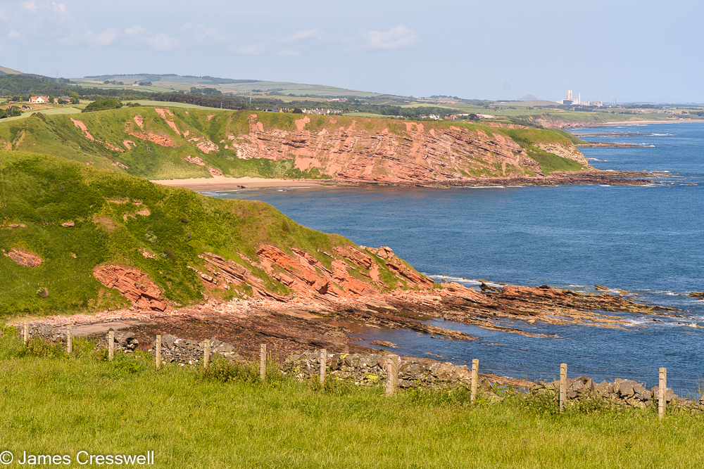 Sea cliffs made of red coloured rock