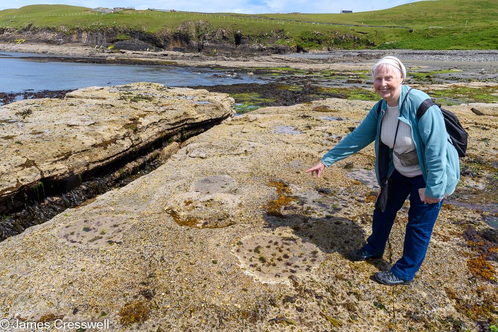 A woman points to dinosaur tracks on a rocky beach