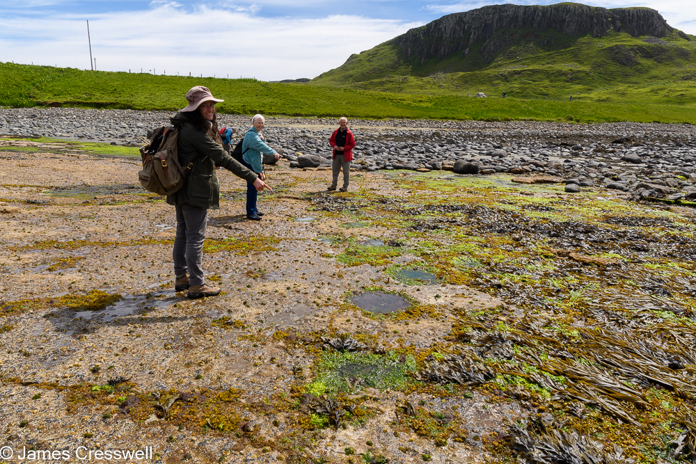 Two women point to dinosaur tracks on a rocky beach