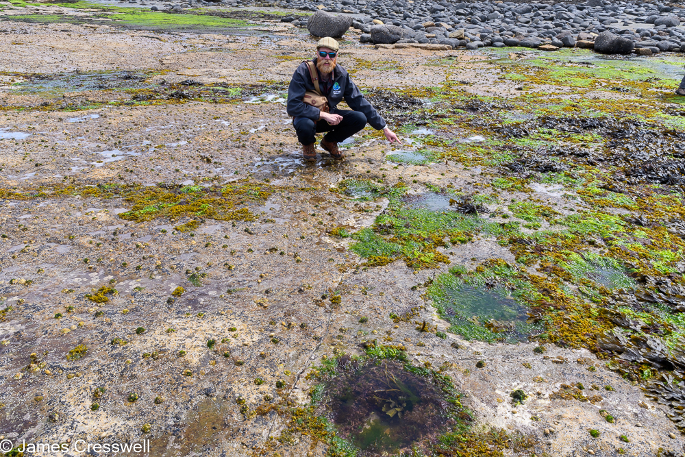 A man, James Cresswell, points to dinsaur tracks at Duntulm, Isle of Skye