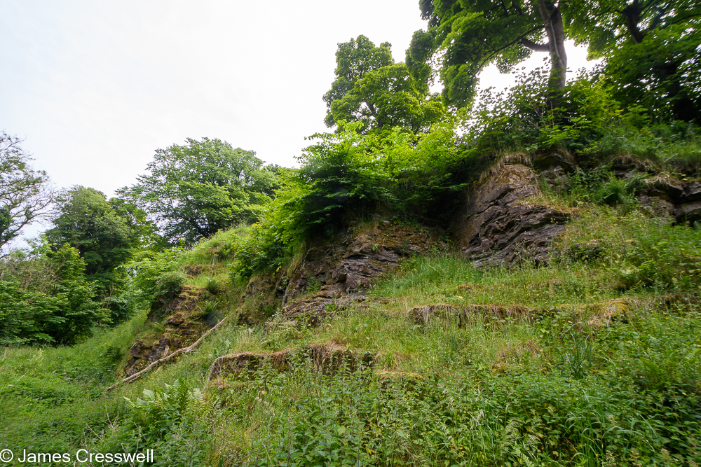 A small cliff in a quarry